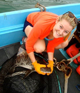 Leopard shark navigation and social behavior research assistantship with Scripps Institution of Oceanography, San Diego, CA (2013-2014)